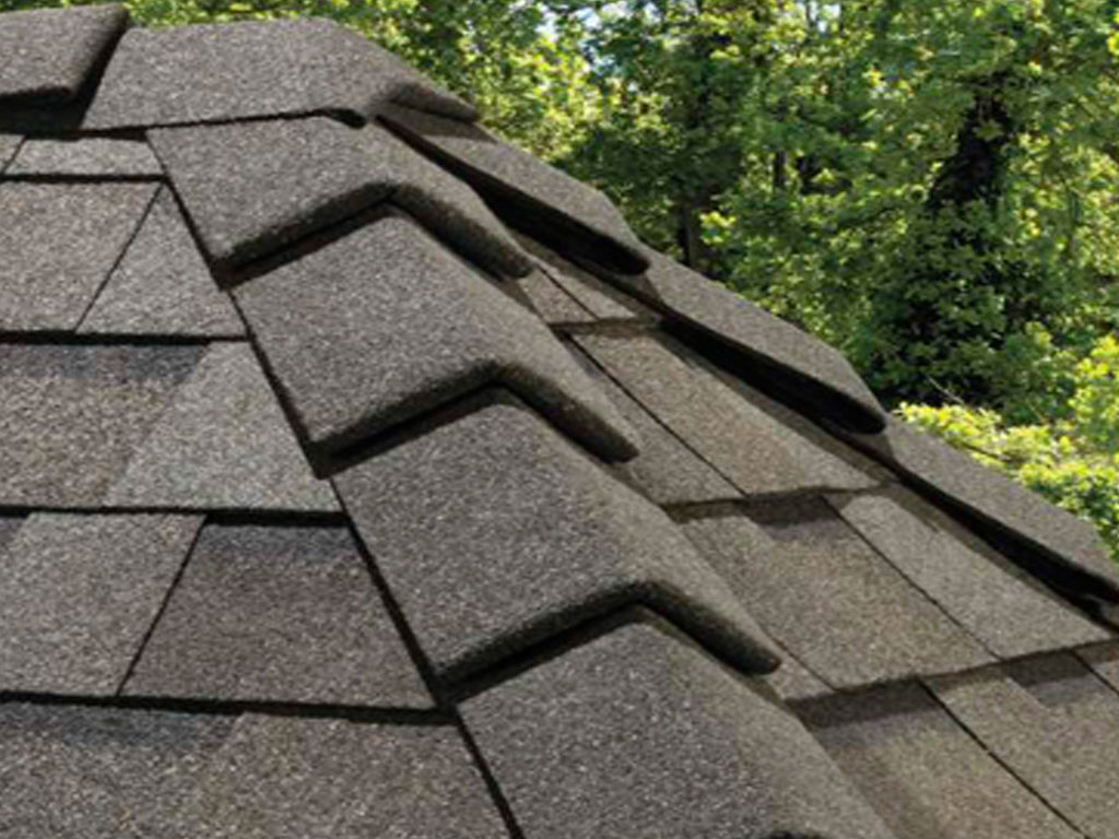 roofing-contractor-neskowin-city-job